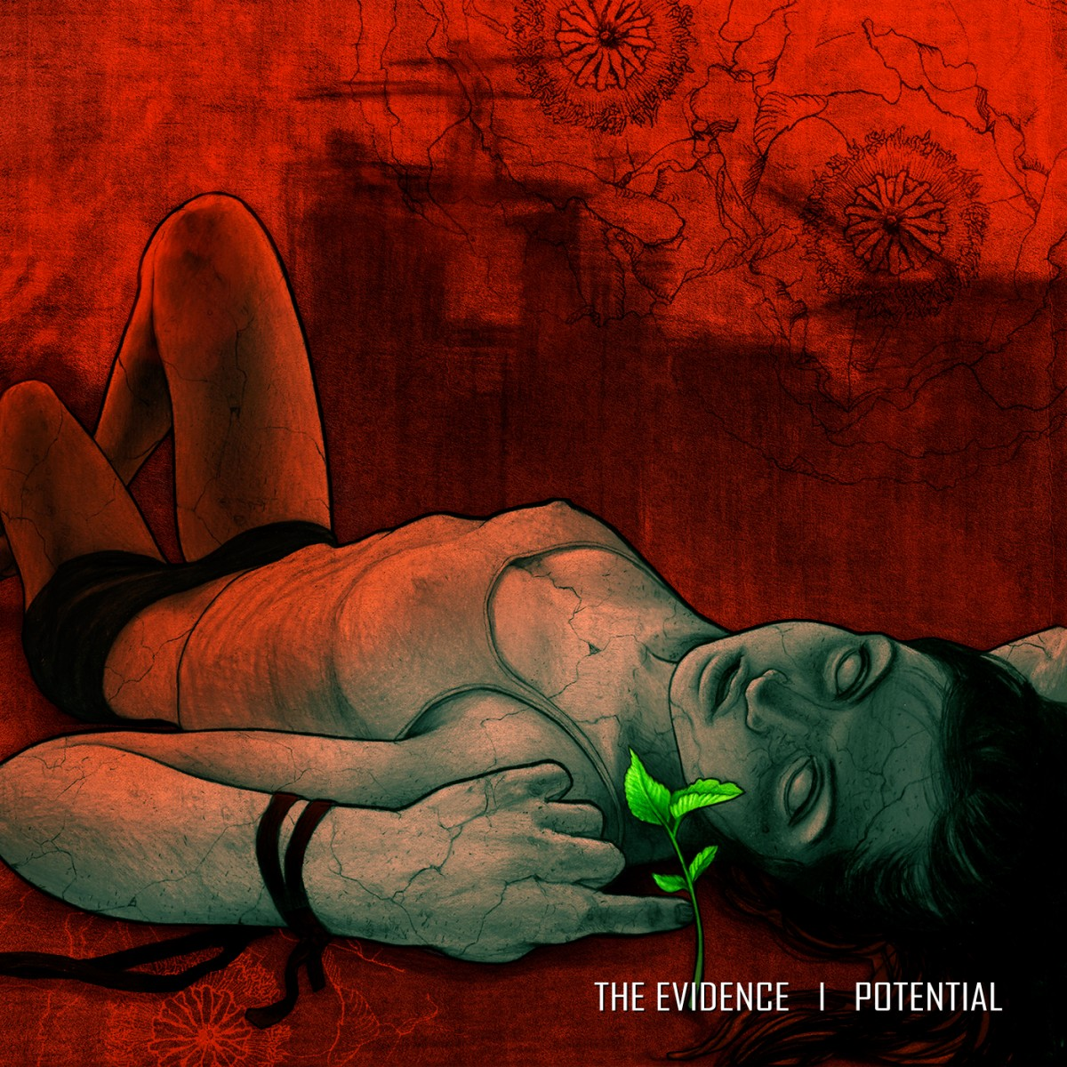 The Evidence - Potential